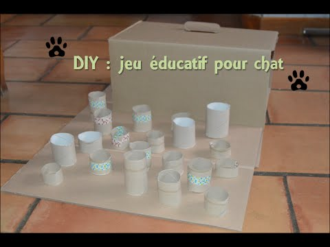 d i y jeu ducatif pour chat youtube. Black Bedroom Furniture Sets. Home Design Ideas