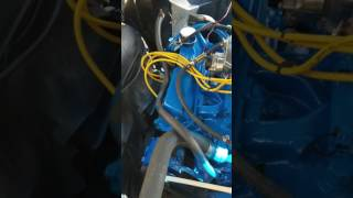 1965 Ford 352 FE  running with 1 Broke push Rod