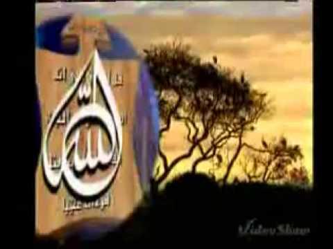 c3631af86 Uncategorized | ~~~~~ بسم الله الرحمن الرحيم ~~~~~ | الصفحة 13