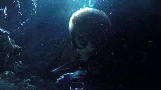 Дайвинг в Доминикане. Дайвинг в Бока Чика. Cave Taina. Diving in Dominican Republic. Boca Chica.