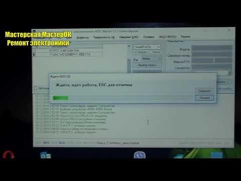 Ошибка транслятора 561 на жестких дисках Western Digital исправляем WDMarvel и Data Lifeguard