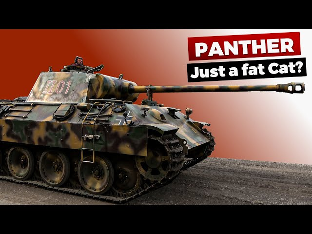 The most Controversial Panzer