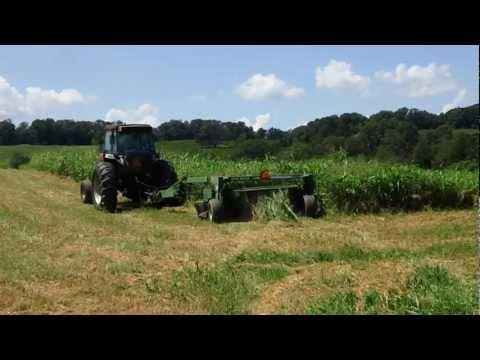 Discbine Mowing Pearl Millet