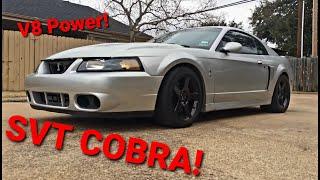 03 Terminator Cobra Walk Around