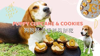 Pumpkin Peanut Butter Pupcakes & Dog Treats | 狗狗南瓜花生醬蛋糕與小餅乾
