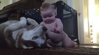 Baby and dog show love for one another