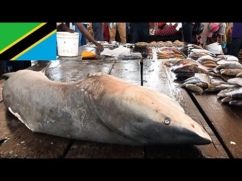 Dar Es Salaam - Kivukoni Fish Market, Inside Views, Biggest In Tanzania  - Don't Miss