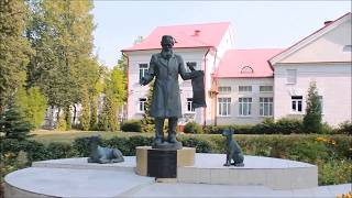 Обучение и студенческая жизнь иностранных студентов в академии (автор декан БТФ Федотов Д.Н.)