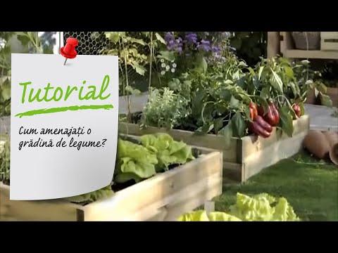 Cum amenajati o gradina de legume? Amenajare exterioara - Ghid video Leroy Merlin Romania