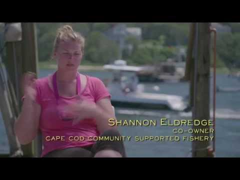 Food Rebel | Shannon Eldredge | Cape Cod Community Supported Fisheries