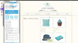Créateur de Sites HTML   Présentation de la Boutique en Ligne