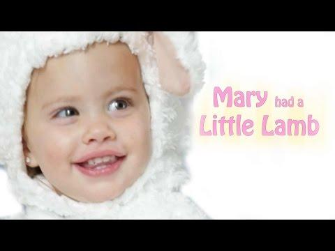 Mary Had a Little Lamb   Baby Songs   Nursery Rhyme   Kid Friendly