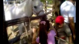 FOGGIA a La Contessa - RitrovarSI a cavallo - con i bambini delle Scuole comunali dell