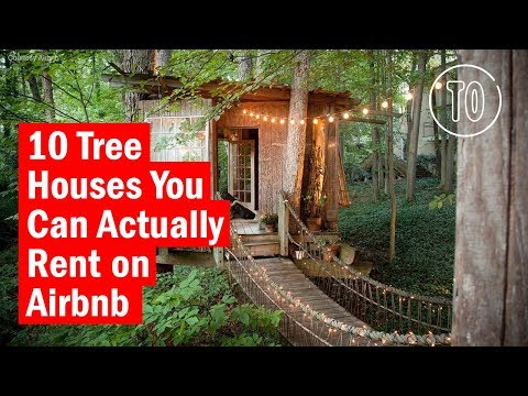 10 Tree Houses You Can Actually Rent on Airbnb