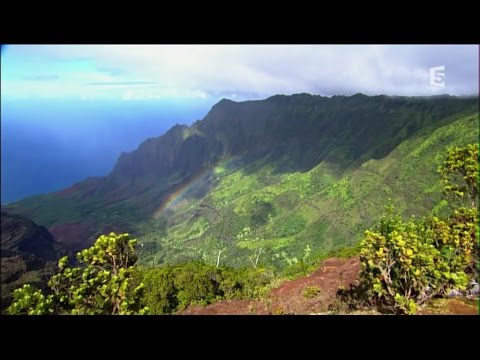 Planete insolite - Hawaii