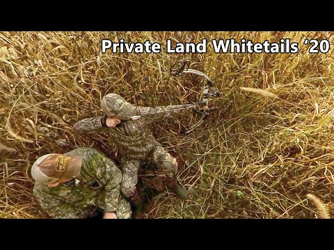 Two Bucks...And A Boomer? - Bowhunting From The Ground - Private Land Whitetails