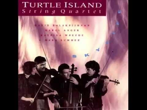 Turtle IslandString Quartet - Skylife