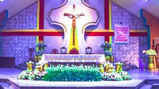 Our Lady Of Lourdes Parish Decoration Set up