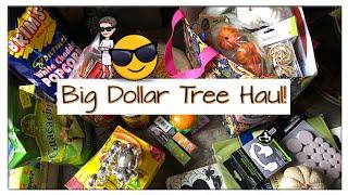 Big Dollar Tree Haul ~ New Finds ~ Wish List Items ~ September 2018