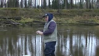 Хороший отдых с рыбалкой. My fishing(Хороший отдых с рыбалкой., 2016-10-31T21:12:44.000Z)