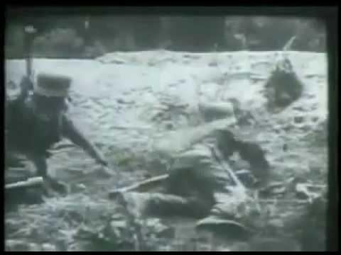 Soldados Cidadãos -  Força Expedicionria Brasileira
