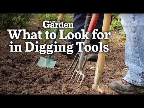 What to Look for in Good Digging Tools   Kitchen Garden Magazine  