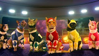 Mighty Morphin Meower Rangers | Ep 1 – A Meower Rangers Halloween