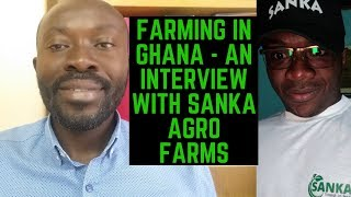 FARMING IN GHANA - INTERVIEW WITH CEO OF SANKA AGRO FARMS