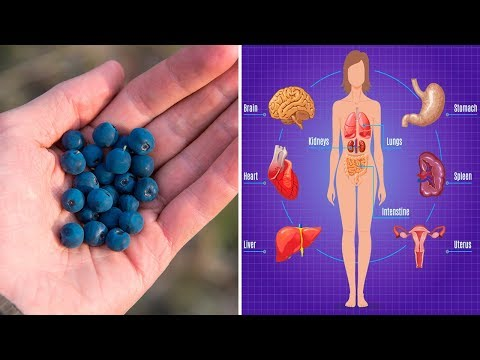 7 Proven Health Benefits of Blueberries