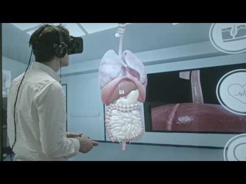 Virtual Reality of Human Anatomy