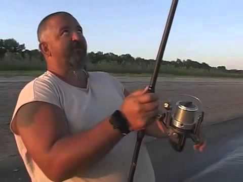 Ловля сазана на реке Нижняя Волга часть 1 - YouTube