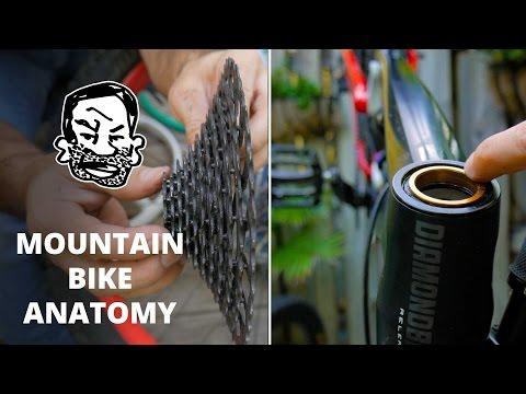 Mountain Bike Anatomy - 50 parts in 5 minutes