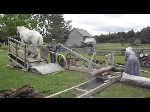 horse powered saw at kings Landing Historical Settlement in NB, was cool to see