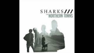 Sharks - Brassneck