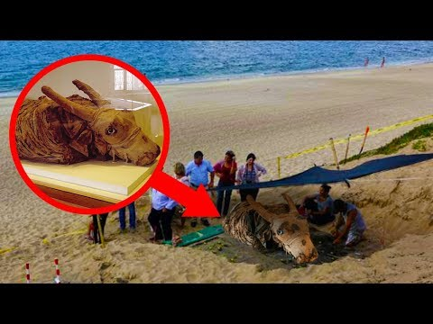 Most INCREDIBLE Animal Mummies Ever Discovered!