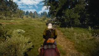 The Witcher 3 - No HUD, Max Settings 1080p/60fps