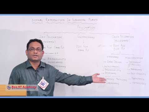 Pollination - NEET AIPMT AIIMS Botany Video Lecture [RAO IIT