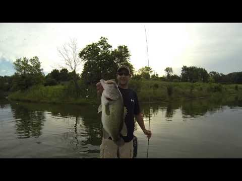 Another 6 lb Largemouth Bass DuPage County IL - Silver Lake in Blackwell Forest Preserve