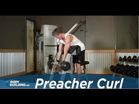 Preacher Curl - Biceps Exercise - Bodybuilding.com