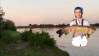 рыбалка на АМУРА НА РЕКЕ ИЛИ жерех в подарок