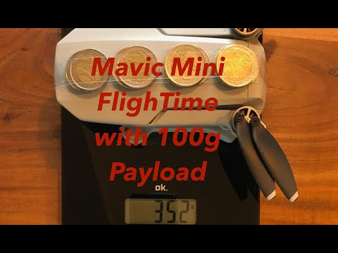 Mavic Mini Flight Time With 100g Payload