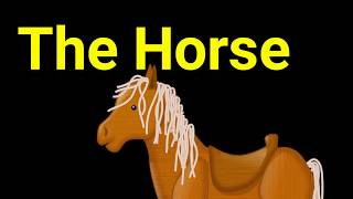 horse essay for kids How to use horse in a sentence example sentences with the word horse horse example sentences.