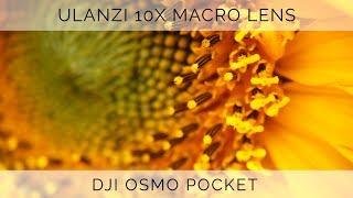 Ulanzi 10x Macro Lens For DJI Osmo Pocket
