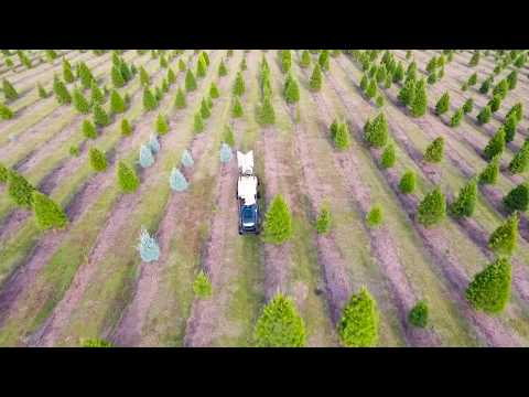 Dallas Drone | Christmas Tree Farm | Full Package Media