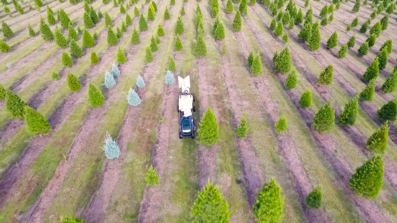 dallas drone christmas tree farm full package media