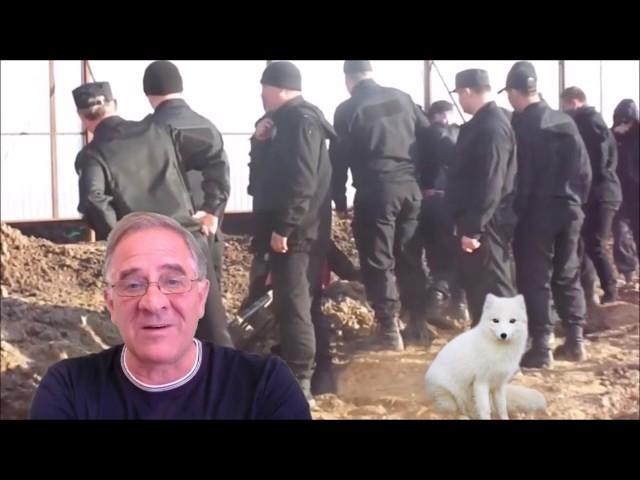 Началось: события в Шиесе как продолжение событий в Ингушетии
