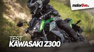TEST | KAWASAKI Z300 - Baby-boom bike