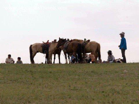 Mongolia Travel photos