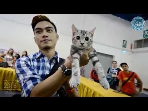 Kelab Kucing Malaysia / Fife / Cindy's Recipe @Pet World 2016 Mid Valley Megamall