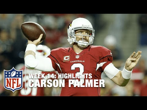 Carson Palmer Highlights (Week 14) | Vikings vs. Cardinals | NFL
